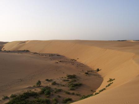 Pente de sable dans le désert de Coro