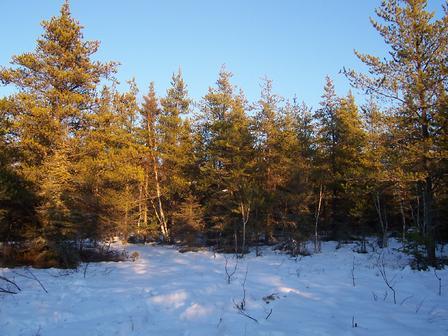 Coucher de soleil sur la neige des montagnes de Saint-Hilarion