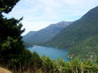 Une rivière au Olympic National Park de l'État de Washington
