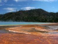 Les sources d'eau chaude du parc National de Yellowstone au Wyoming